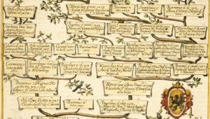 Drzewo genealog – 3